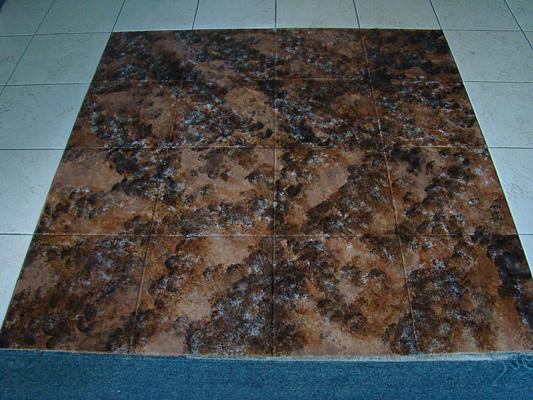 Beautiful Ceramic Tile Staining Coloring Pictures - Triamterene.us ...